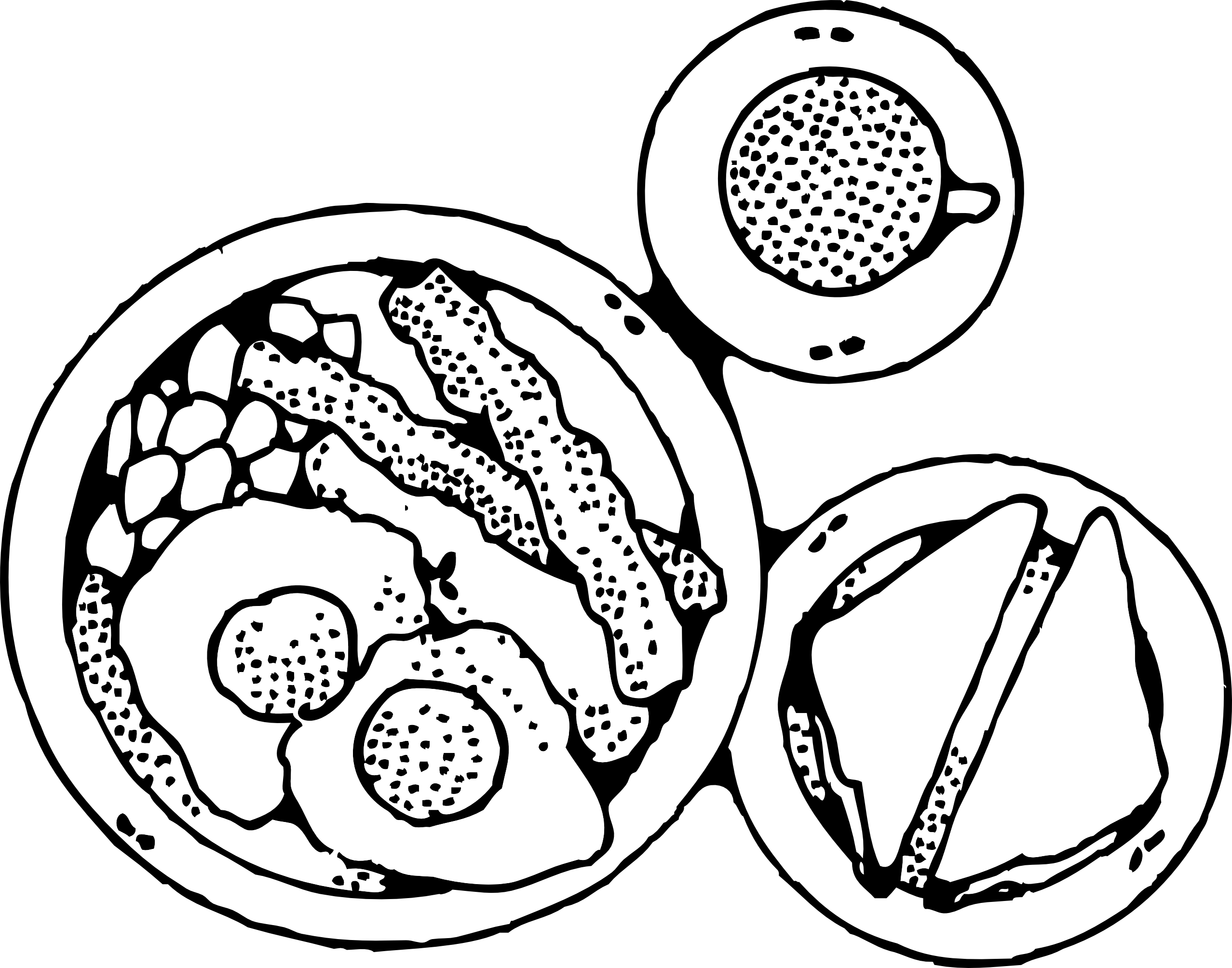 Pancake clipart cooking breakfast Clipart collection Black white Bacon