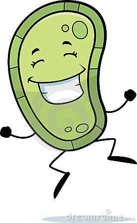 Escherichia Coli clipart happy Best Happy 93 bacteria Pinterest
