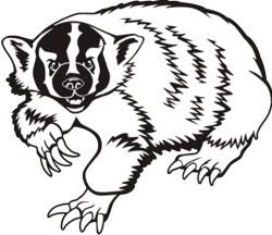 Badger clipart mascot Free Badger Clipart Clipart Clipart