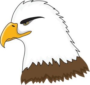 Bald Eagle clipart #12