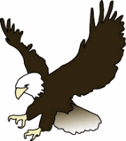 Bald Eagle clipart #15