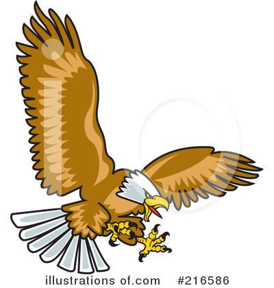 Bald Eagle clipart #13