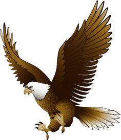 Bald Eagle clipart Pictures Clipartix clip art eagle
