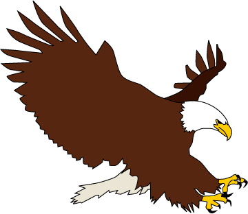 White-tailed Eagle clipart Art Bald Cliparting clip related