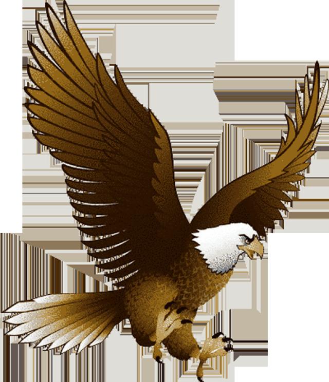 Bald Eagle clipart Eagle clip bald Patriotic pictures