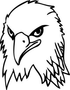 Bald Eagle clipart face How to Eagle about A