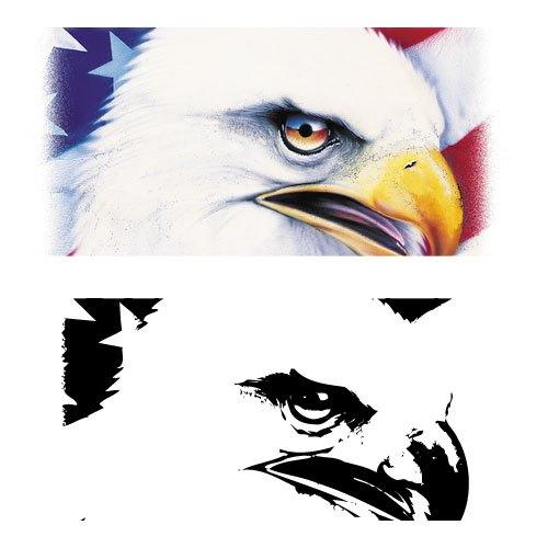 Bald Eagle clipart pagemaker Blog  Big for Intelligent