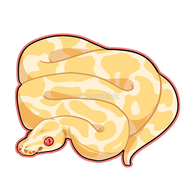 Ball Python clipart burmese python By Redbubble cargorabbit Ball by