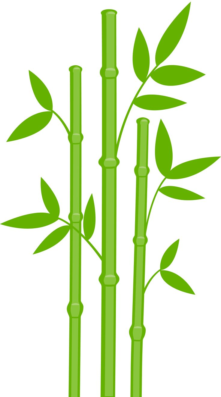 Leaves clipart bamboo leaf #15