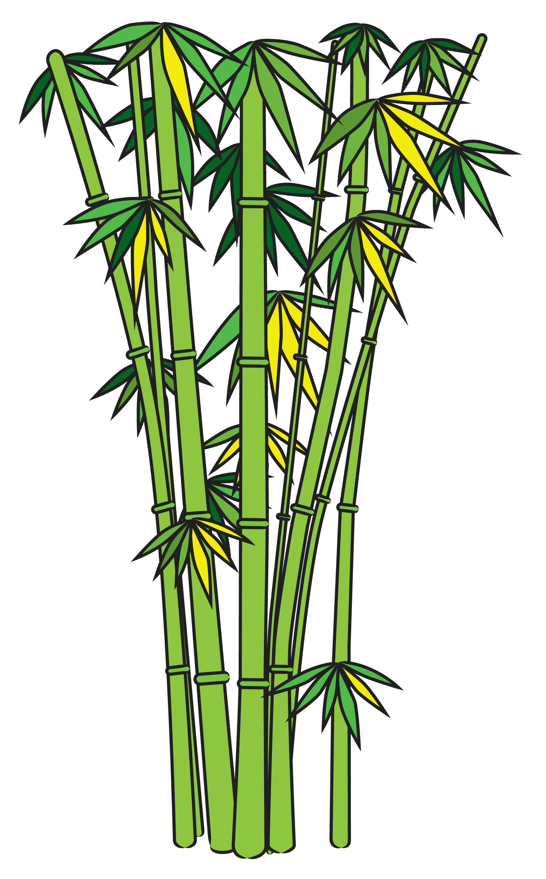 Drawn bamboo forest plant #12