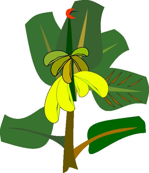 Banana clipart banana tree Clip Clip Tree Clipart Download