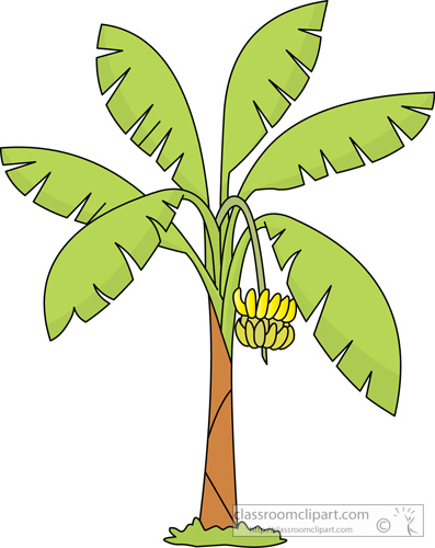 Banana clipart banana tree Results banana holding Size: 54