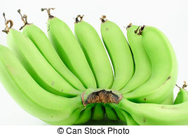 Banana clipart green banana   107 Images isolated