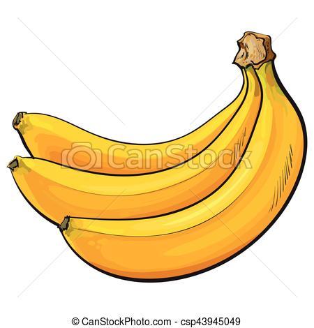 Banana clipart ripe Of illustration Bunch bananas three