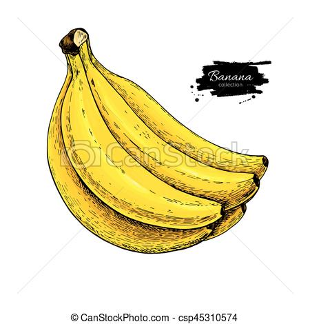 Banana clipart yellow object Hand artistic bunch vector background