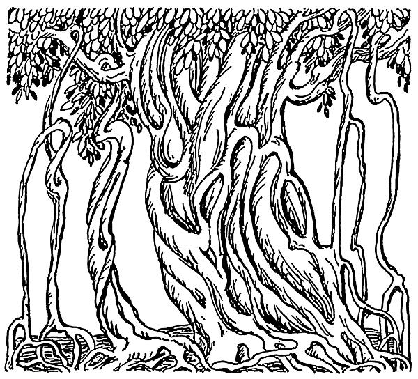 Banyan Tree clipart hindi Health of national tree The