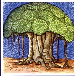 Banyan Tree clipart hindi Banyan tree banyan Clipart Tree