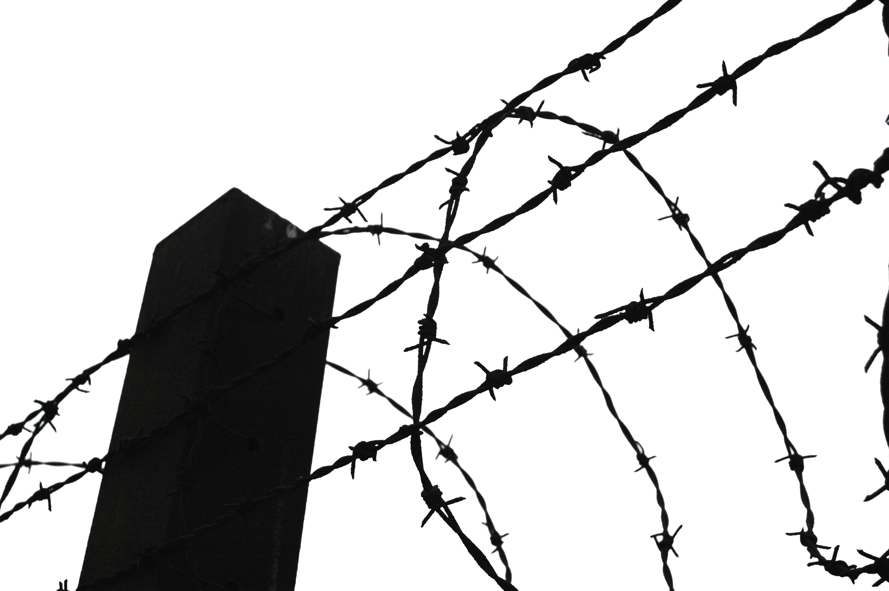 Barb Wire clipart razor wire Transparent Clipart PNG Barbwire PNG