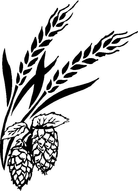 Drawn grain vintage Pinterest best For and Beer