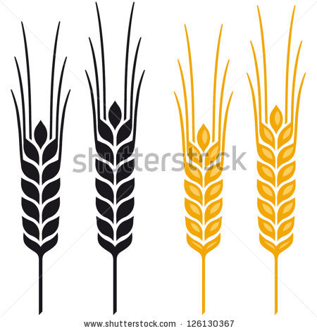 Barley clipart wheat leave Free Rye Ears Barley Clipart