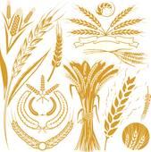 Barley clipart wheat Wheat Wreaths GoGraph Barley Art