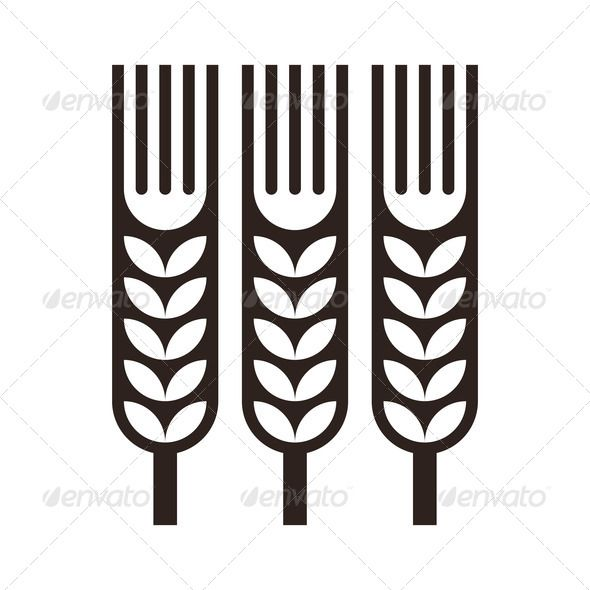 Barley clipart wheat leave Pinterest Barley  botany Cooking