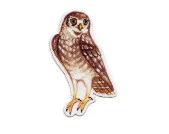 Brown Hawk Owl clipart burrowing owl Etsy Favor Office Magnet Owl