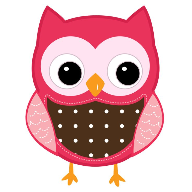 Barred Owl clipart carton Images on and Clipart Clipart