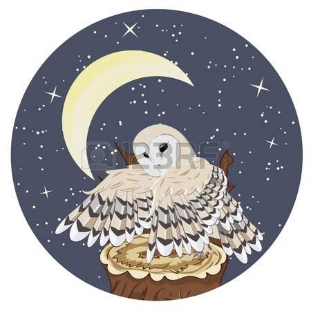 Barn Owl clipart catoon Owl Barn Art Top Art