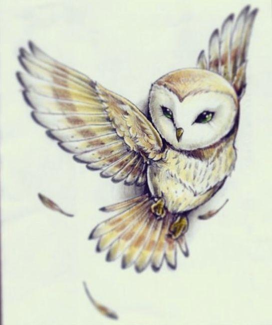 Drawn spirit owl #15