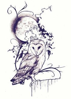 Drawn owlet graphic design black  Moon Giclée by Owls