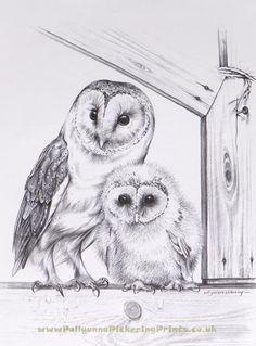 Drawn owl couple @deviantART Barn on Barn