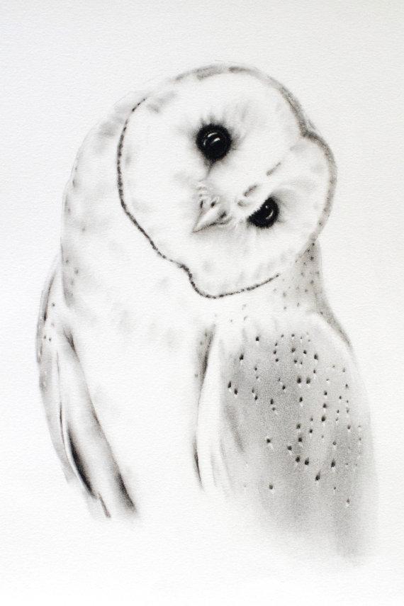 Drawn owl barn owl Barn 11x14 ORIGINAL Charcoal Owl