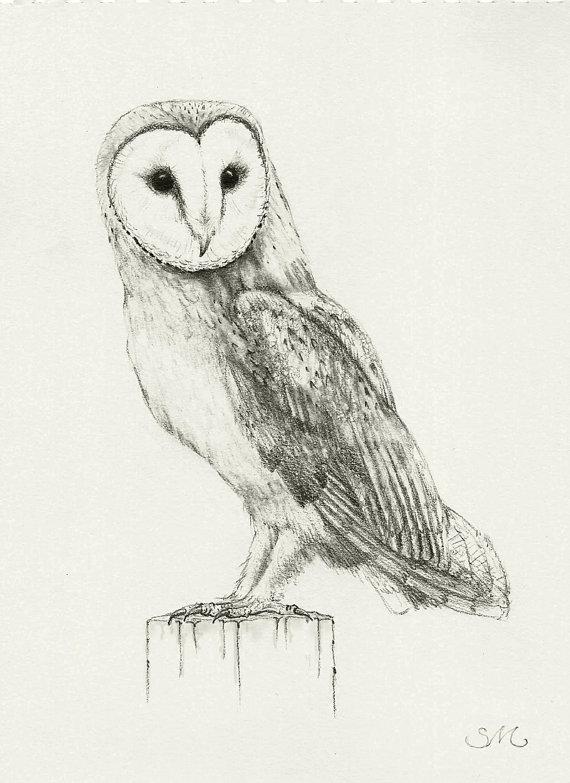 Drawn owl couple Barn Print Owl Owl Print