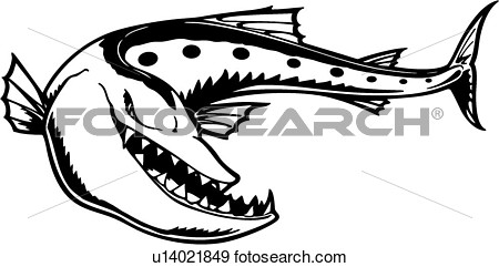 Barracuda clipart baracuda 61 #5 Clipart Fans Barracuda