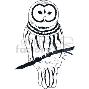 Barred Owl clipart Owl Clip barred owl Barred