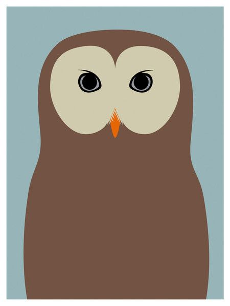 Barred Owl clipart animated Day Cartoon  about best
