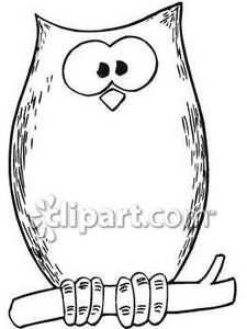 Barred Owl clipart carton On about Clipart Owl owls