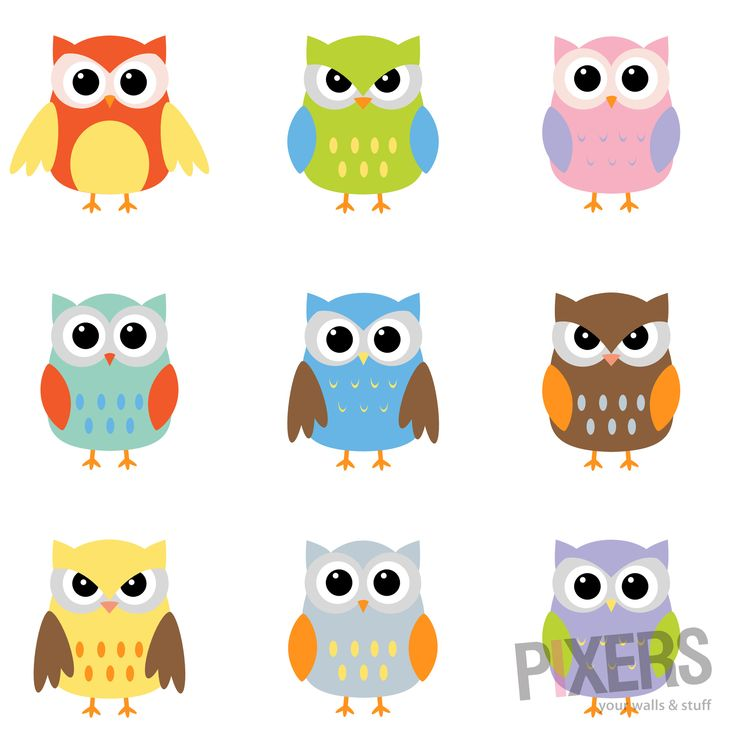 Barred Owl clipart carton On Home For images best