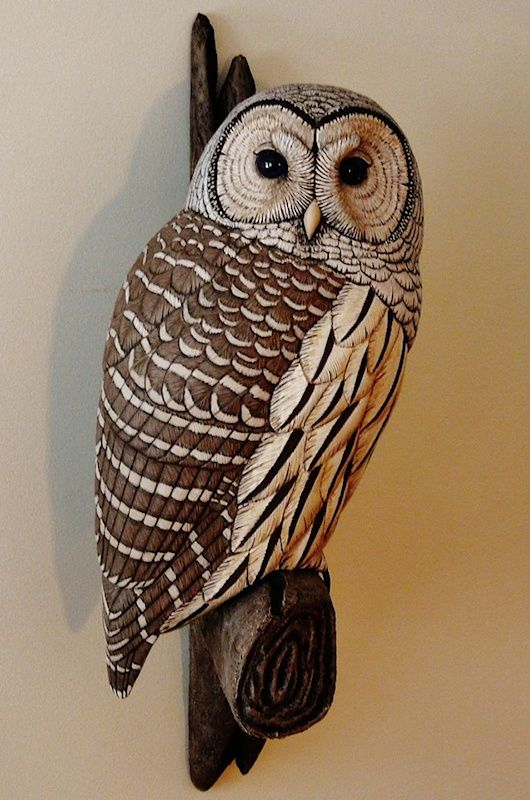 Barred Owl clipart smart Art McEachern Pinterest 231 carving