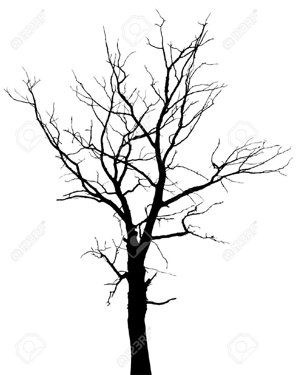 Drawn branch Background tree 114KB black hd