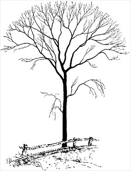 Barren clipart By Clipart Clipart Free bare