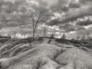 Barren clipart Acclaim barren clipart barren &