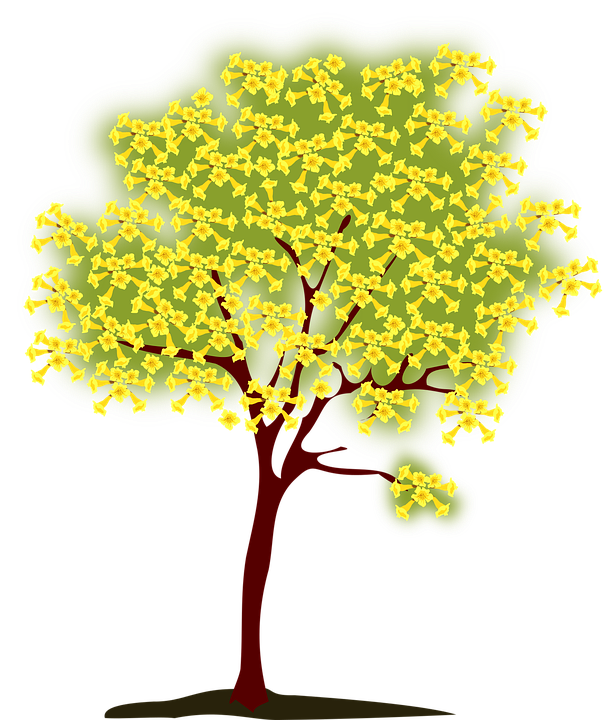 Barren clipart dead tree Tree Silhouette photo Nature Blossoming
