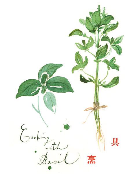 Basil clipart watercolor Illustration decor poster  Google