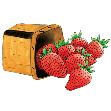 Basket clipart berry Sweet Berry