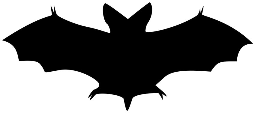 Bat clipart Bat%20Clip%20Art Clipart Clipart Clipart Images