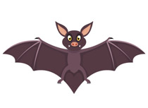 Bat clipart Bat Bat Art Illustrations Clipart