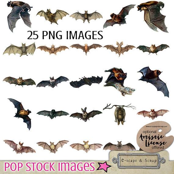 Bat clipart creepy halloween Digital a Clipart Digital is