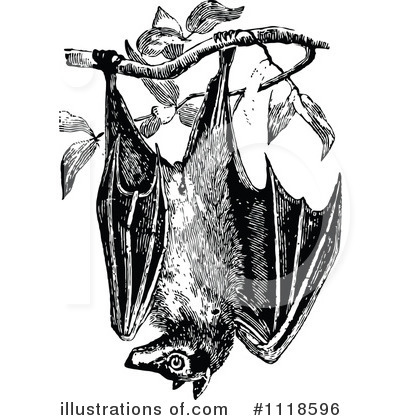 Bat clipart illustration (RF) Illustration by Clipart Royalty